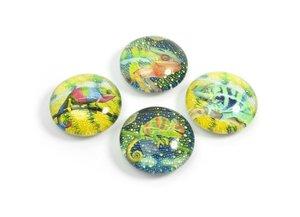 Kameleon magneten van glas - set van 4 stuks