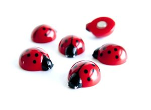 Lieveheersbeestje magneten - set van 6 sterke magneten