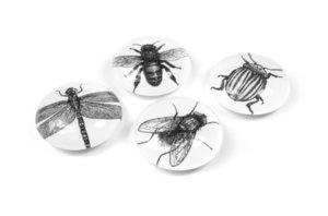 Trendform magneten Eye Bug - 4 stuks