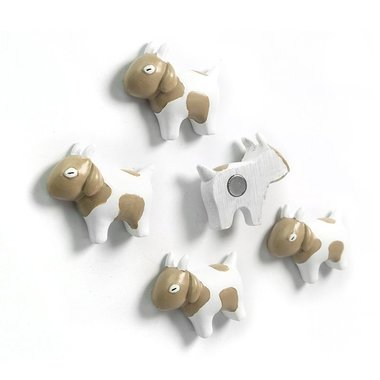 Leuke geitjes magneten - set van 5 stuks
