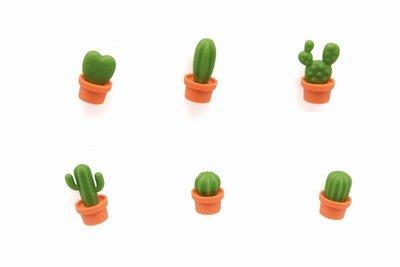 cactus magneten oranje pot