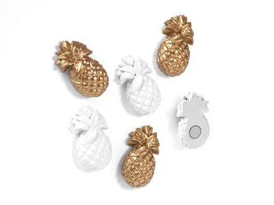 ananas magneten
